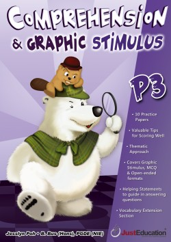 Comprehension and Graphic Stimulus P3